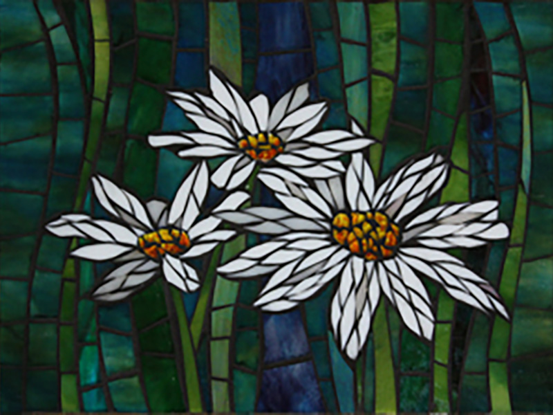 3-daisies-sm